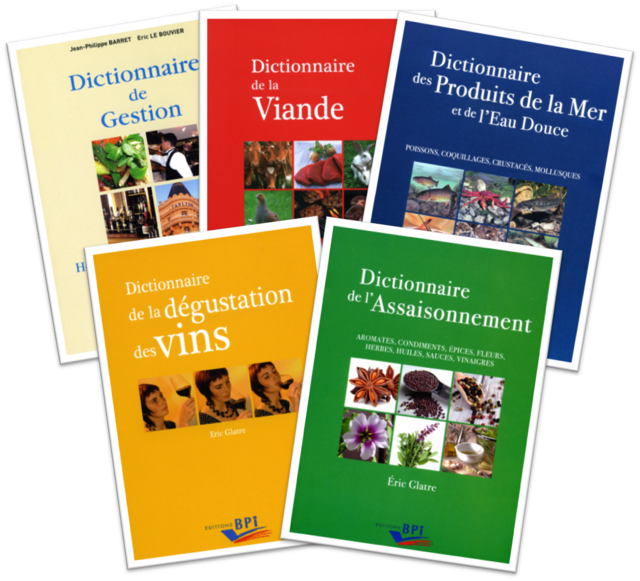 Lot de 5 dictionnaires -  - Editions BPI